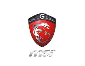 MSI Review