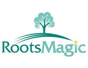 RootsMagic Review